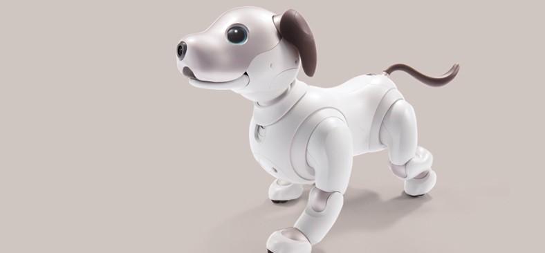 有感情的智能小狗AIBO上市 售价过万
